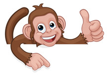 A Monkey Cartoon Character Animal Peeking Over A Sign And Pointing At It While Doing A Thumbs Up