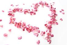 Heart Rose Petals / Pink Roses...