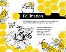 Pollination Hand Drawn Vector ...