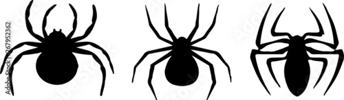 Photo spider icon on white background