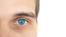 Close Up Of A Male Eye. Detail Of A Blue Eye Of A Man Looking At Camera On A White Background