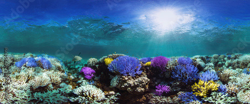 Canvas Print Glowing coral reef
