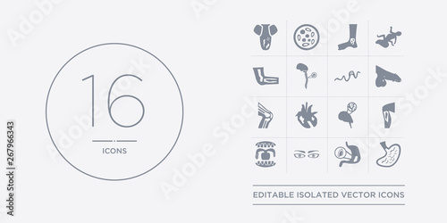 16 vector icons set such as stomach flu, stomach ulcers, strabismus