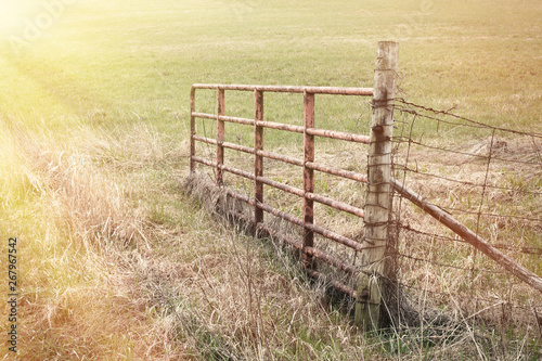 Photo Open pasture gate with sun rays.