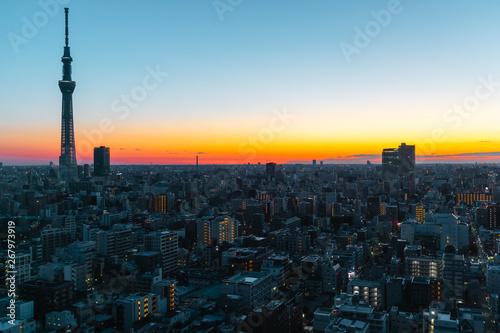 Poster Tokyo Tokyo skyline at sunrise/ sunset
