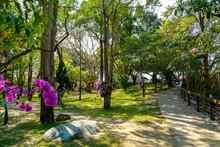 Sicao Dazhong Temple. Tainan Sicao Green Tunnel Ecological Park.