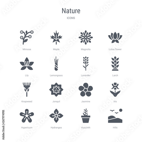 set of 16 vector icons such as hills, hyacinth, hydrangea, hypericum, iris, jasmine, jonquil, knapweed from nature concept Canvas Print
