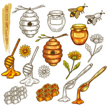 Set Of Isolated Honey Items In Line