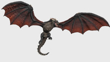 Dragon With Fully Opend Wings ...