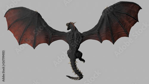Fotografie, Obraz  Dragon viewed from above on gray background isolated 3d illustration