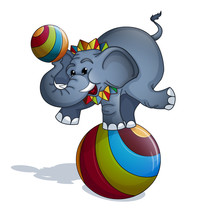 A Trained Elephant In A Colorf...