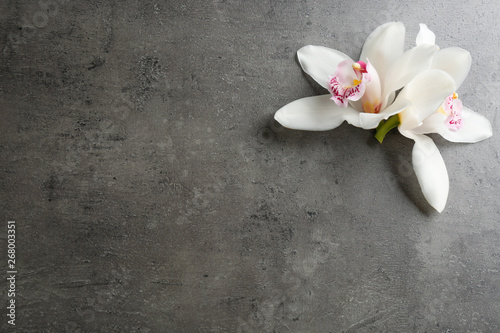 Foto auf Gartenposter Orchideen Beautiful tropical orchid flowers on grey background, flat lay. Space for text