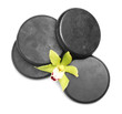 canvas print picture Beautiful orchid flower and spa stones on white background, top view
