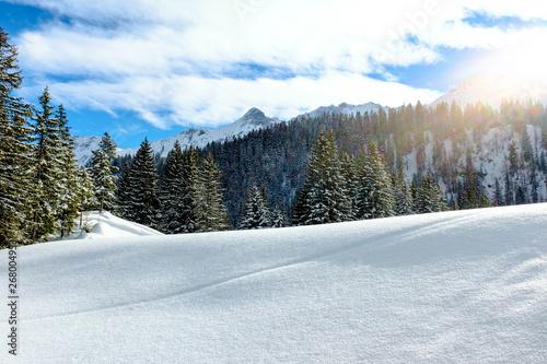 Fototapety, obrazy: Zauberhafte Winterlandschaft im Gegenlicht