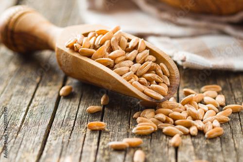 Photo Healthy spelt grains.