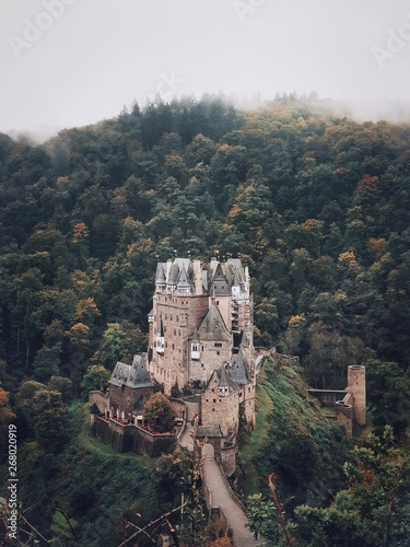 elevated forest castle
