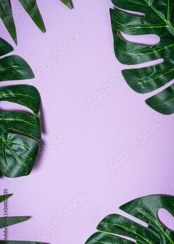 Tropical leaves on violet background. Wall mural