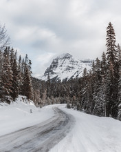 Plowed Road To Mountain