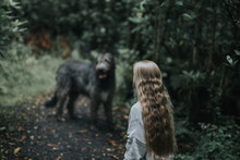 Woman In Gray Sweater Facing On Gray Dog Near Trees