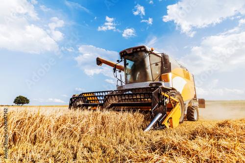 Papel de parede Combine harvester harvests ripe wheat. agriculture