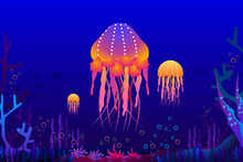 Jellyfish And Coral Under The ...