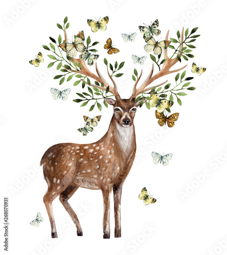 Hand painted watercolor deer isolated on white background Wall mural