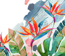 Tropical Watercolor Bird-of-paradise Flower And Tropical Leaves On Rough Brush Strokes Background