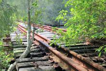 Stoney Creek Disused Railway Bridge