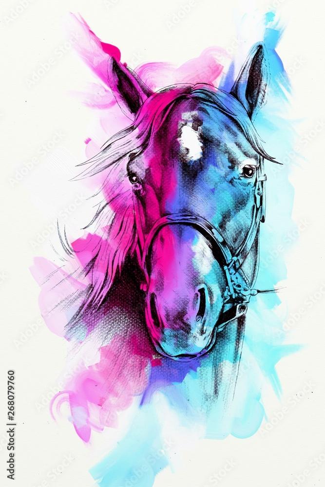 Fototapeta Original oil painting of a fine arabian horse