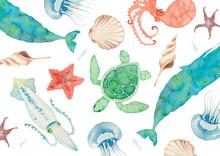 夏 背景 テキスタイル 海の生物 水彩 イラスト