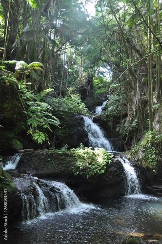 Hawaii Waterfalls V