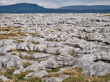 Limestone Pavement - An Area Of Limestone Eroded By Water - In The Yorkshire Dales, UK, With Pen-y-ghent In The Background