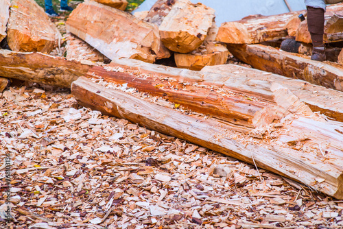 Wood chips  Natural bright yellow colored wooden shavings