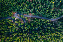 Drone View Of Winding Forest R...