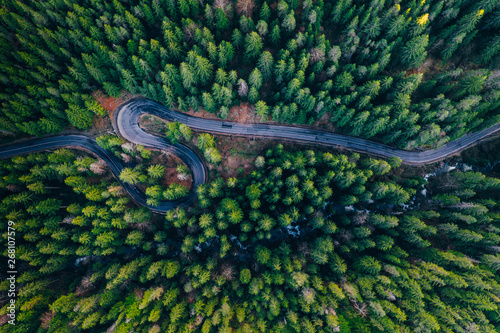 Obraz Drone view of winding forest road - fototapety do salonu