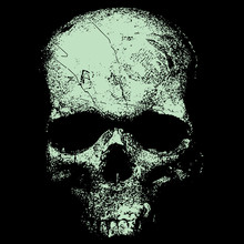 Vector Image Of A Skull In An...