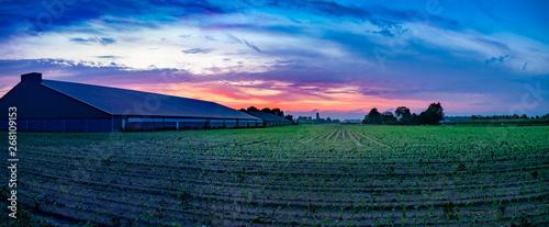 Fotografía Colorful sunrise, typical Dutch agricultural landscape