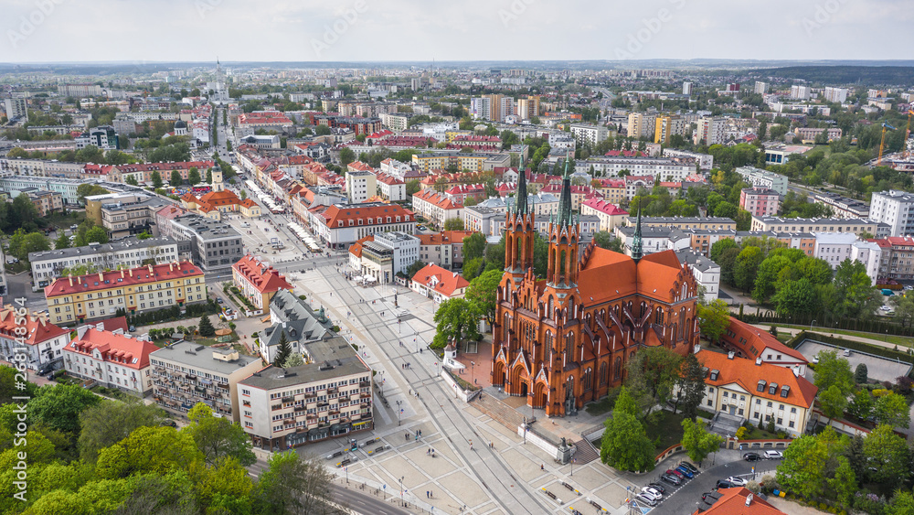 Fototapety, obrazy: Bazylika katedralna Wniebowzięcia NMP w Białymstoku zlotu ptaka