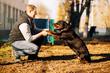 Leinwandbild Motiv Male cynologist, police dog training outdoor