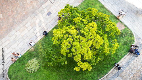 Obraz some people from above sitting at a small city park green - fototapety do salonu