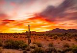 Piękny zachód słońca na pustyni, Quartzsite Arizona
