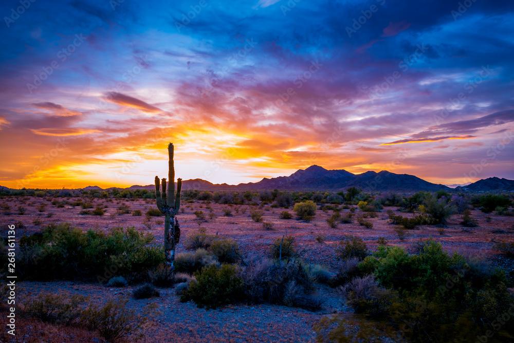 Fototapety, obrazy: Buetiful Sunset in the Desert, Quartzsite Arizona