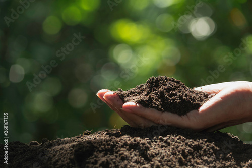 Foto Hand of male holding soil in the hands for planting.