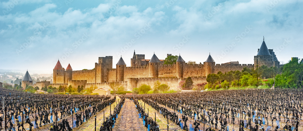 Fototapeta View of the medieval city of Carcassonne from a vineyard, France