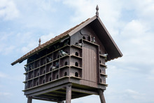 Cool Wooden Dovecot With Lots Of Pigeons At A Farm