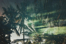 Reflections Of Coconut Palms In A Resort Pool At Sunrise