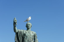 Seagull Over A Head Of An Old Sculpture Of Caesar.