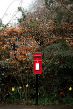 Red Postbox Surrounded By Vege...