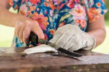 Senior Woman Filleting Fish Wi...