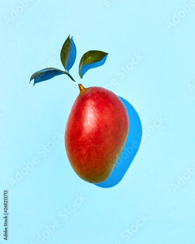 Flat Lay view mango red with green leaves single on a blue backg